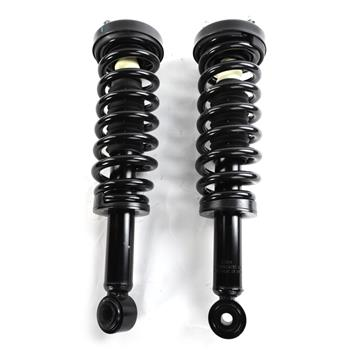 2pcs Front Struts & Coil Springs Assembly for Ford F-150 2009 - 2013