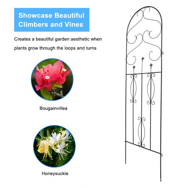 """4 Pack 60"""" x 18"""" Rustproof Iron Garden Trellis for Potted Plants Lattice Climbing Rose Vine Flower Cucumber Clematis, Arched Top"""