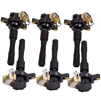 6 piece Ignition Coilpacks for BMW 323i 2.5L L6 1748017