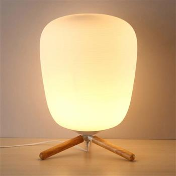 Ultra Modern Mini Fashion Frosted Glass Lampshade and Wooden Bracket Texture Study Table Lamp with Light Source US Plug