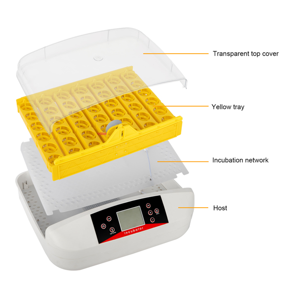 42-Egg Practical Fully Automatic Poultry Incubator with Egg Candler US Standard Yellow & & White & Transparent